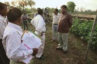GM field trials now need panchayat nod