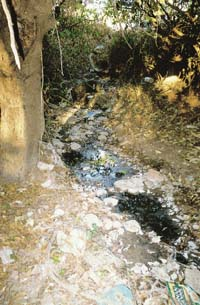 Industry fouls groundwater in Goa