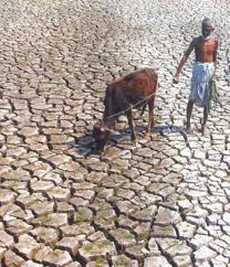Climate change and India: a 4x4 assessment - a sectoral and regional analysis for 2030s
