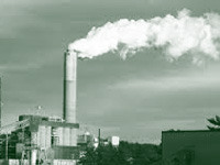 Govt yet to act against polluting industries