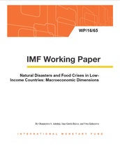 Natural disasters and food crises in low-income countries: macroeconomic dimensions