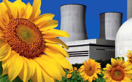 The world nuclear industry status report 2013
