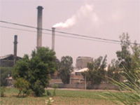 Muktsar villages unite against 'polluting' mill
