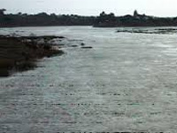 Bhima river clean-up campaign launched