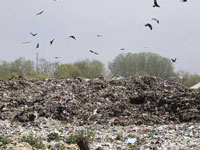 A fortnight on, no respite in sight from smoke at Ghazipur landfill