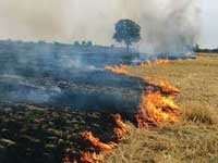 'Provide equipment to tackle stubble residue'