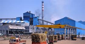 NGT cracks whip on Gangakhed sugar factory for violating green norms