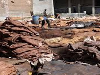 Tannery owners blame officials for pollution