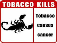 Tobacco panel is reconstituted
