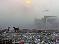 Garbage politics: Support against waste management plant swells