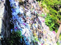 Reserve forest turned into dumping ground in Haridwar