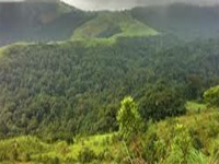 Conserve bio-diversity of Western Ghats, says expert