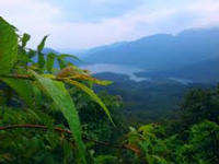 Cabinet rejects Kasturirangan report on Western Ghats