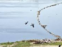 Committee to inspect Yamuna water level